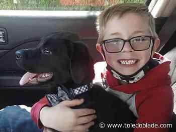Burris: Love for animals   The Blade - Toledo Blade
