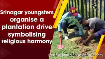 Srinagar youngsters organise a plantation drive symbolising religious harmony