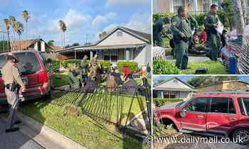 high-speed chase ends with car carrying 12 illegal immigrants crashing into Texas home's front yard