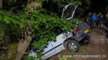 Bestuurder botst tegen boom en gaat ervandoor - Omroep Brabant