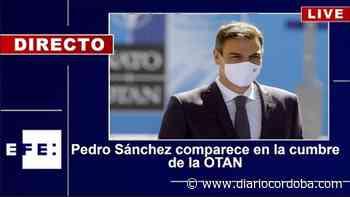 Directo | Rueda de prensa de Pedro Sánchez desde la cumbre de la OTAN - Diario Córdoba