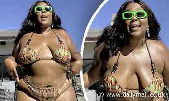 Lizzo posed in a bikini as she puts, calls for Big Grrrl Summer