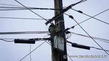 précédent Marck: plusieurs quartiers privés d'électricité... à cause de cigognes - La Voix du Nord