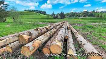 Holzlager in St. Georgen - Holzlager im Interesse der Stadt - Schwarzwälder Bote