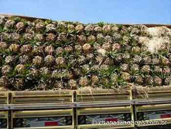 Caminhão carregado com abacaxi de Itaberaba tomba na Serra de Francisco Sá - chapada notícias