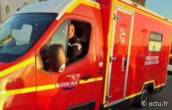 Région de Pornic : sauvée par des témoins, une femme de 73 ans a manqué de se noyer - actu.fr