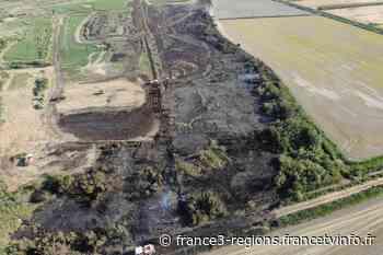 Arles : le feu saute d'une haie à l'autre et parcourt 20 hectares - France 3 Régions