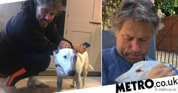 John Bishop heartbroken as beloved dog Bilko dies: 'I loved him'