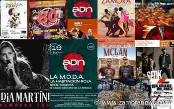 Todo lo que verás en San Pedro 2021 - Zamora News