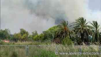 Espectacular humareda desde la CV-35 por un incendio forestal en San Antonio de Benagéber - Levante-EMV