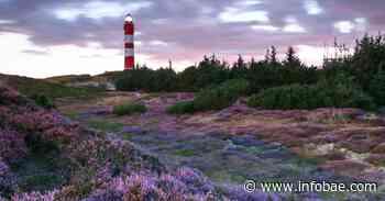 Las islas Frisias, un paraíso natural en el mar de Wadden - infobae