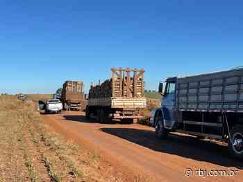 Envolvidos com furto de madeira são presos em Rio Bonito do Iguaçu - RBJ