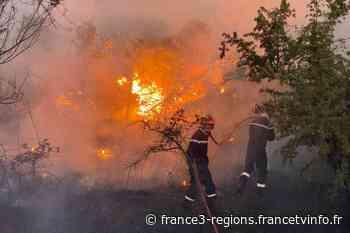 Gard : important feu de garrigue à Aramon, rendu difficile à maîtriser à cause de la sécheresse - France 3 Régions