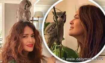 Salma Hayek reveals she stays calm by meditating 'very often' with her rescued pet owl Kering