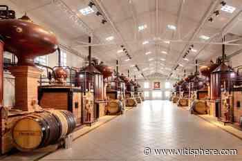 Viticulture / oenologie -Oenologie- : Hennessy verdit ses distilleries de Cognac - Vitisphere.com