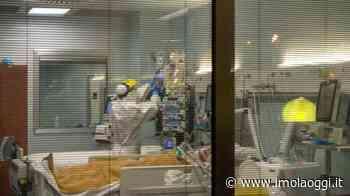 Perugia, bidella vaccinata muore per Covid: presentata denuncia • Imola Oggi - Imola Oggi