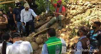 Hallan restos fósiles de un mastodonte en Quinchía, Risaralda - Semana.com
