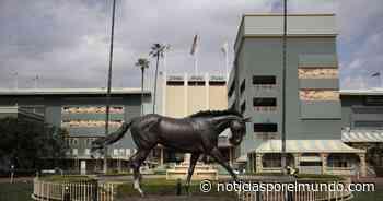 Muere tercer caballo en poco más de 2 semanas en Santa Anita - Noticias por el Mundo