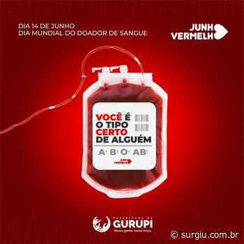 Dia Mundial do Doador de Sangue é comemorado em Gurupi - Surgiu