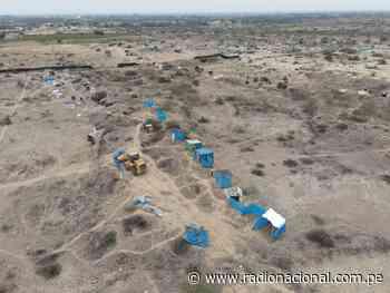 Retiran a más de 800 invasores del Santuario Histórico Bosque de Pómac - Radio Nacional del Perú