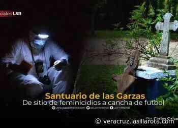 Cambian rostro al Santuario de las Garzas con feminicidios sin castigo - La Silla Rota