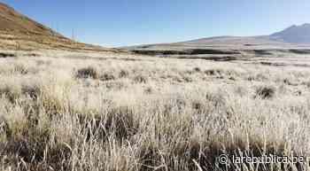 Huaraz: descenso de temperatura afecta a pastos naturales en Jangas - LaRepública.pe