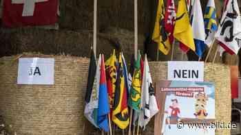 Klima-Hammer in den Alpen - Schweizer sagen Nein zu CO2-Gesetz - BILD