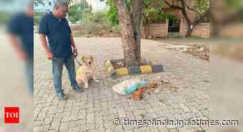 Dog sniffs out deer skin near Sonegaon Lake - Times of India