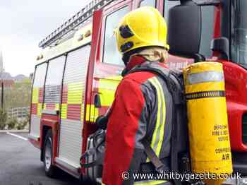 Fire crews from Whitby, Goathland and Lythe tackle blaze at Goathland railway embankment - Whitby Gazette