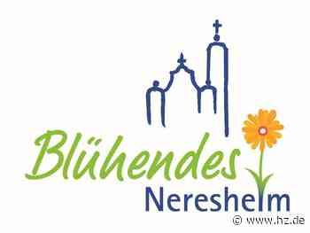 Blühendes Neresheim: Ein Sommer mit Kunst, Kultur und Natur in der Klosterstadt - Heidenheimer Zeitung