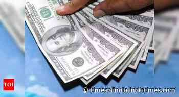 4 reasons why India's growing forex heap may be a problem