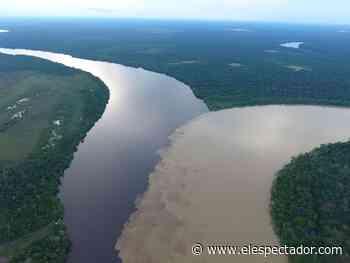 Estrella Fluvial del Inírida Humedal Ramsar, la magia de un destino escondido - El Espectador