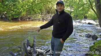 Es häuft sich Müll im Fluss-Idyll - Maulburg - Badische Zeitung