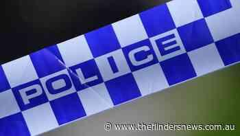 Horse hit twice by Sydney vehicles, dies - The Flinders News