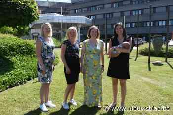 """Dat wordt puzzelen voor de baas, collega's Kathleen, Gaëlle, Elke en Astrid zijn samen zwanger: """"Puur toeval""""<BR />"""