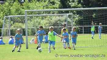 Fußballcamp bei Bad Sassendorf: Kinder strahlen mit Sonne um die Wette - Soester Anzeiger