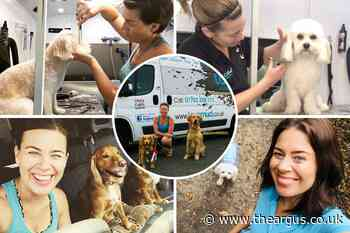 TikTok dog grooming star wins 2021 Enterprise Award