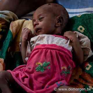 Met 'opzettelijke' hongersnood maken Ethiopië en Eritrea zich schuldig aan oorlogsmisdaad