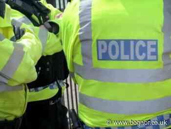 Sussex Police officers smash car window to release dogs locked inside on hot day - Bognor Regis Observer