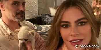 Sofia Vergara Says Her Dog Bubbles Acts Like Joe Manganiello's Mistress: 'She Hates Me' - PEOPLE