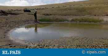 Las imágenes que deja la sequía en California - EL PAÍS