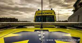 Um ferido grave em despiste de carro na A1, em Santa Maria da Feira - Notícias de Aveiro