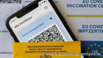 Wo und wie? So kommt man in Baden-Württemberg an den digitalen Impfpass
