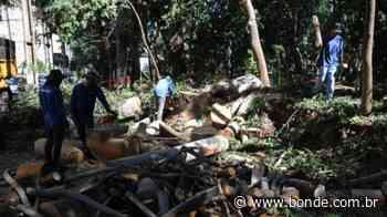 Como está o andamento das obras no bosque central de Londrina - Bonde. O seu Portal de Notícias do Paraná