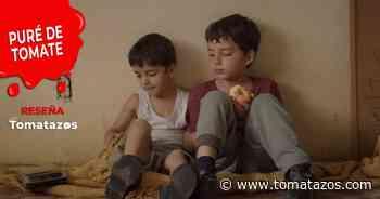 Reseña   Los Lobos: Estudio para superar la melancolía - Tomatazos