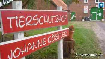 Neuer Vertrag der Stadt Wildeshausen: Fundtiere künftig nach Delmenhorst - Nordwest-Zeitung