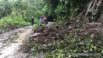 Organismos de socorro atienden emergencias por lluvias en Ibagué - Emisora Ondas de Ibagué, 1470 AM