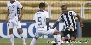 Botafogo bate o Remo no Rio de Janeiro e sobe na tabela da Série B - Agência Brasil