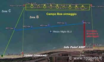 Pineto, riposizionato campo boe di ormeggio nell'AMP - Tg Roseto