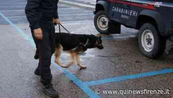 Pusher in piazza per gli ordini del fine settimana - Qui News Firenze